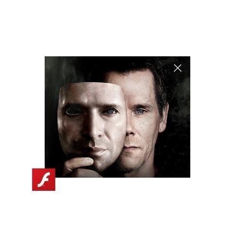 WB Digital Flash Ads
